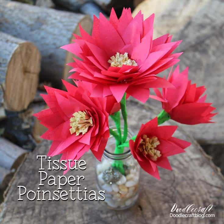 tissue-paper-flowers-cheap-and-easy-to-make-poinsettias-christmas-lightning-craft-diy-doodlecraft-1