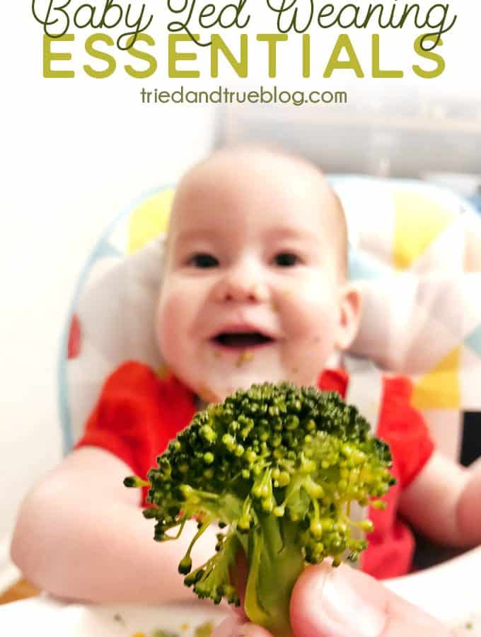 Baby Led Weaning Essentials - Basic supplies needed for BLW