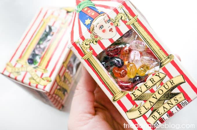 Harry Potter Bertie Bott's Bookends - Beans