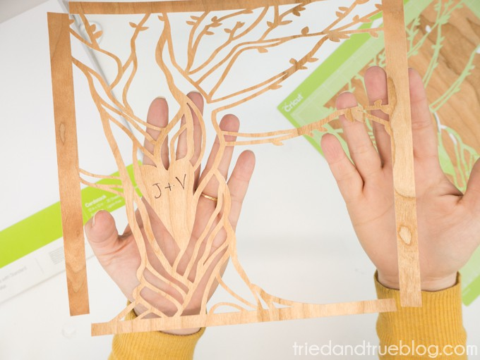 Customized Carved Tree Artwork with Cricut - Tree
