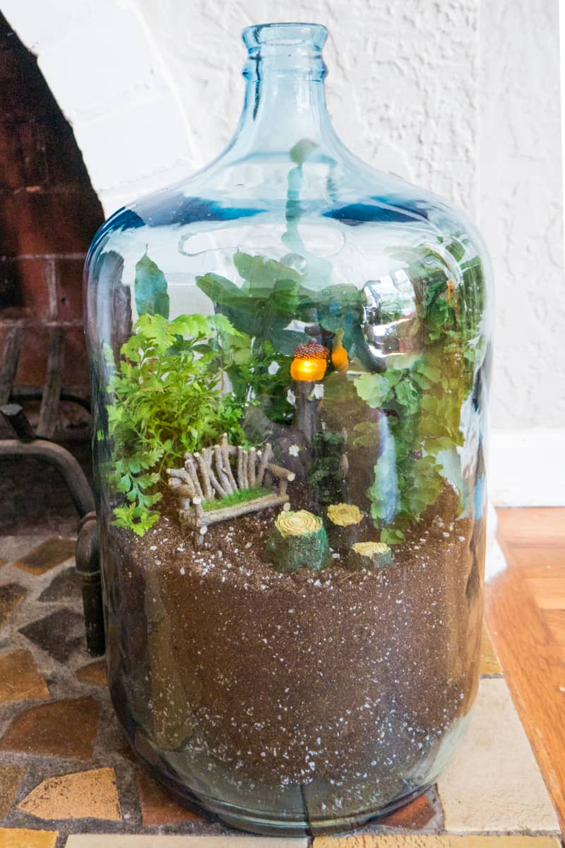 Indoor Gnome Garden made with a vintage carboy