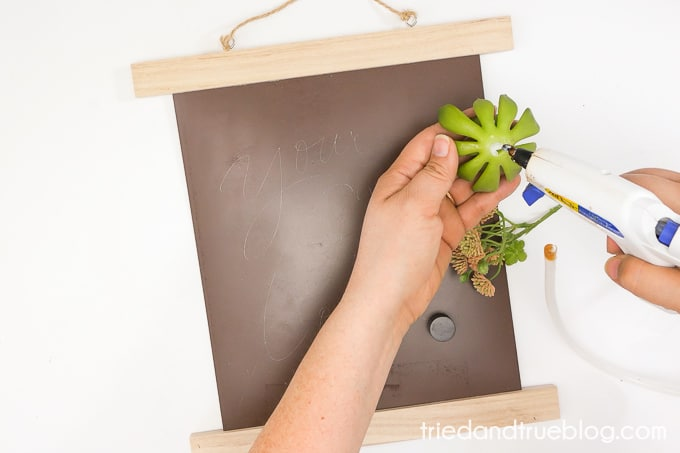 Gluing succulents to magnets.