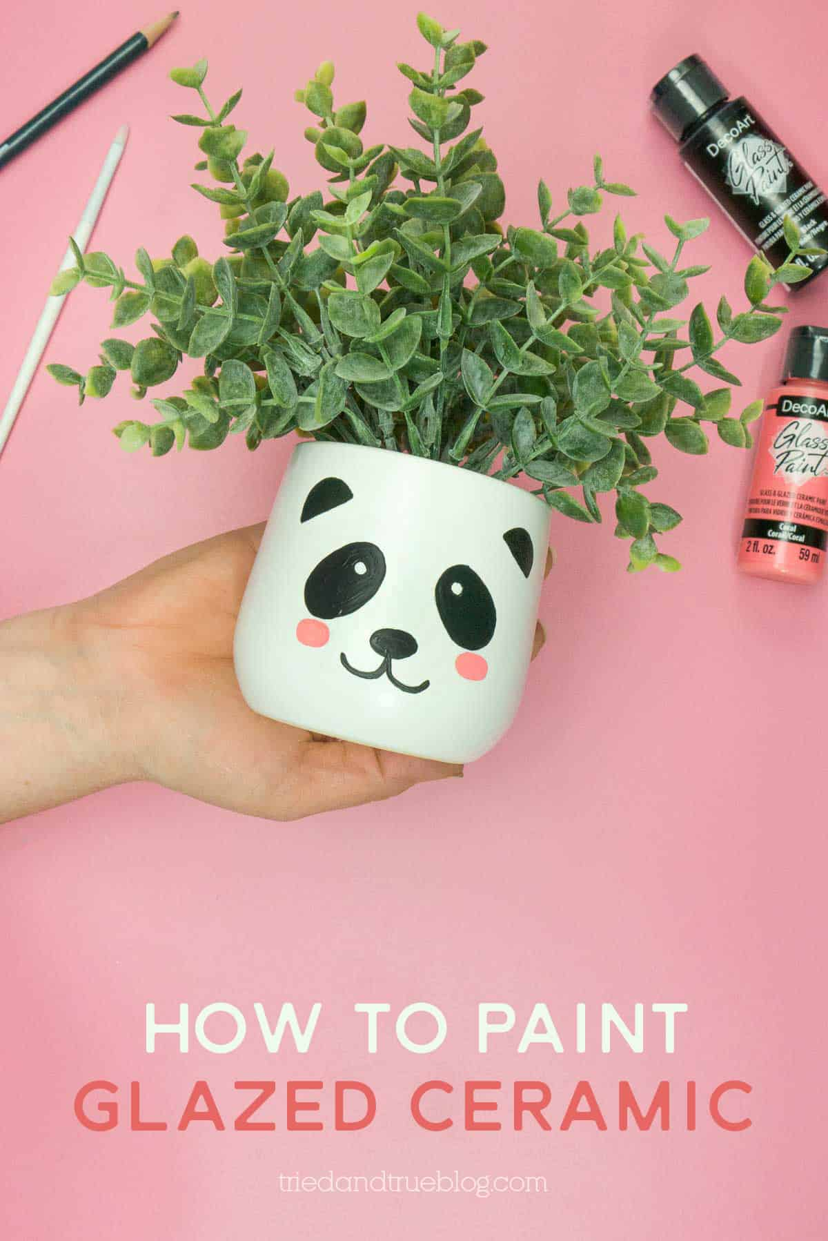 Hand holding white planter with painted panda face. Words include