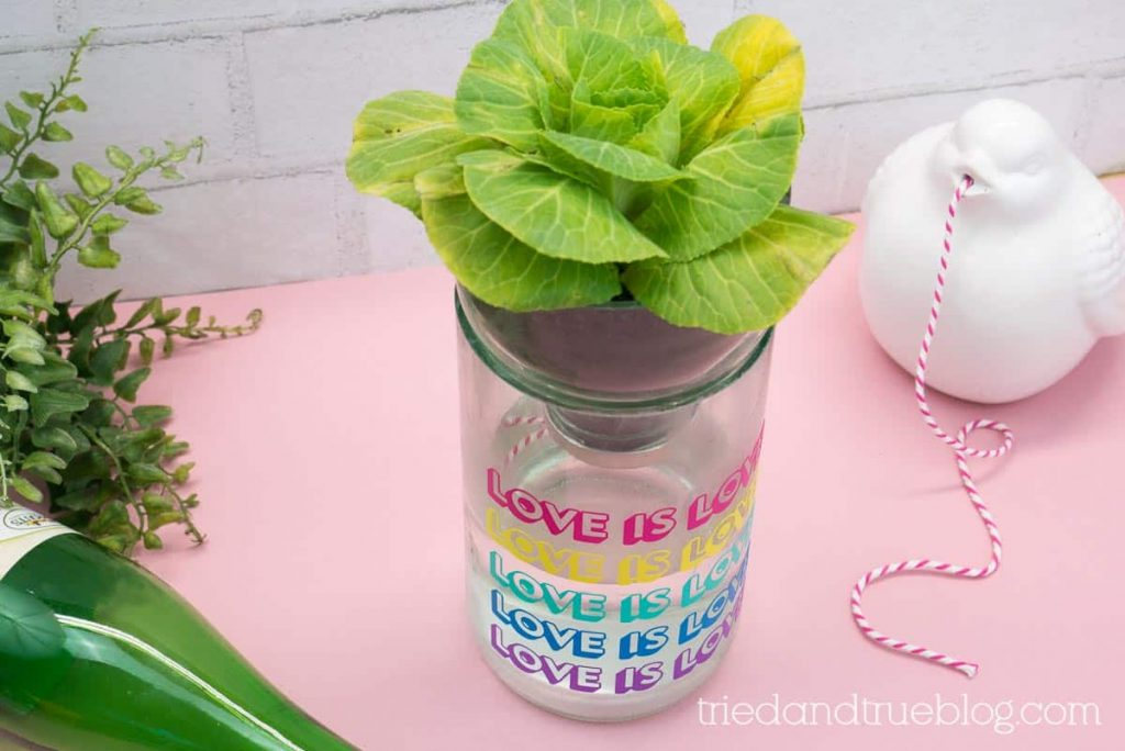 Self Watering glass planter on a pink background with supplies.