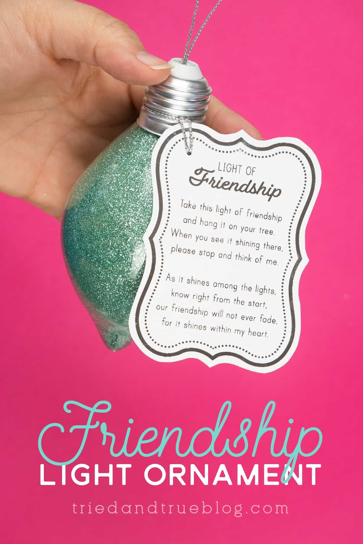 Hand holding a glittered ornament with Light of Friendship Tag on pink background.