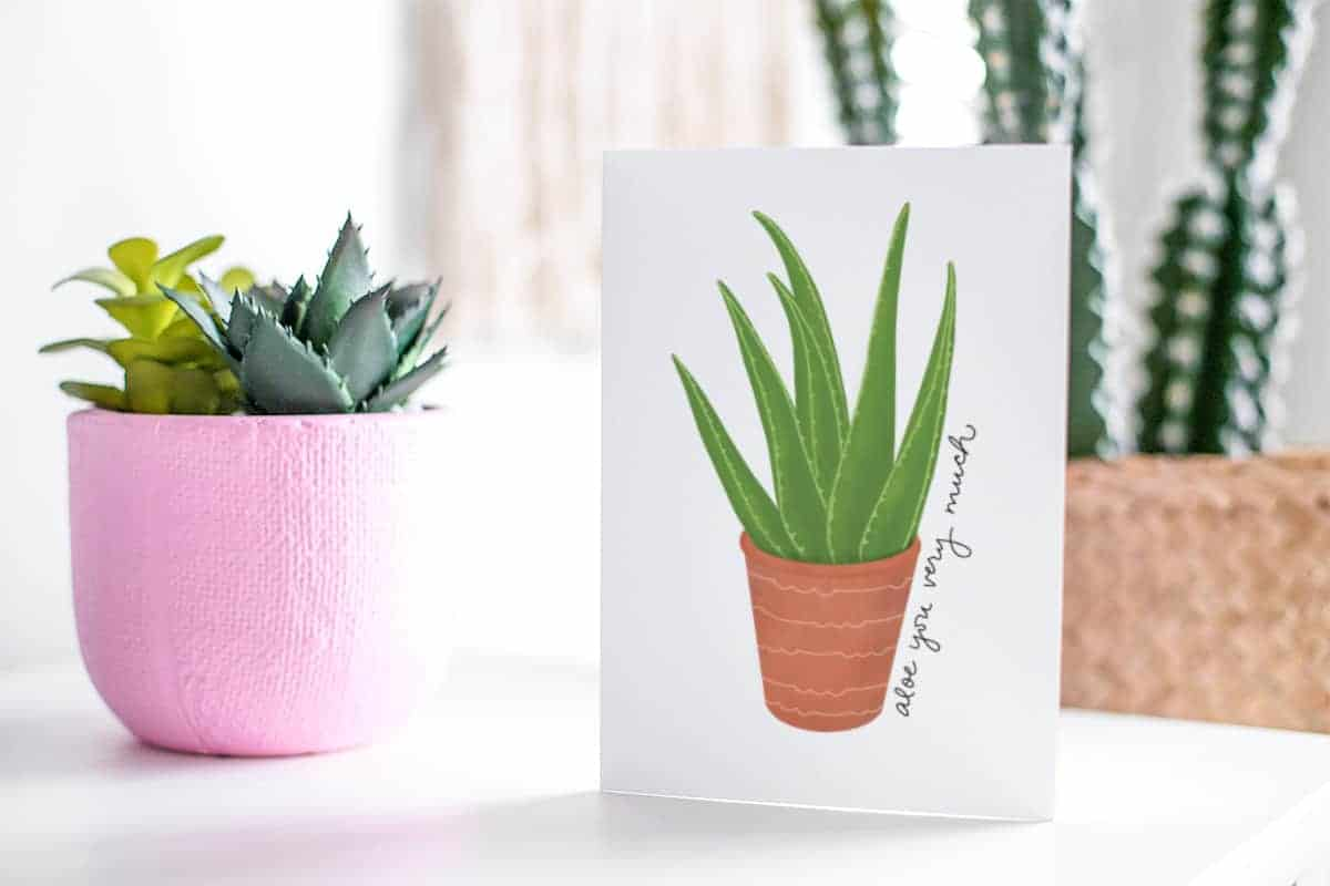 Succulent themed Valentine's Day card