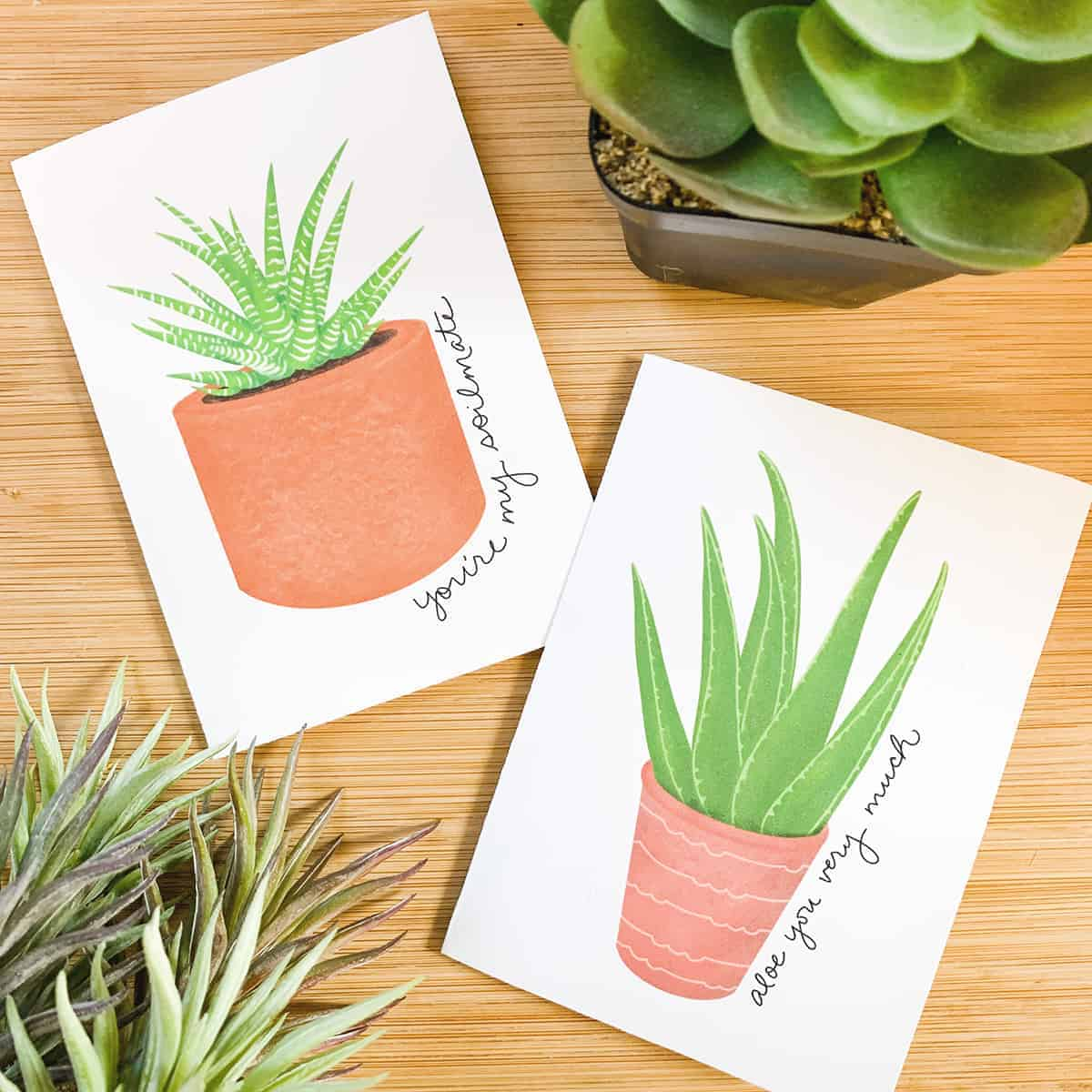 Two Valentine's Day cards with succulent drawings on a bamboo background.